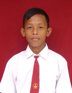 Muhammad Sholahuddin